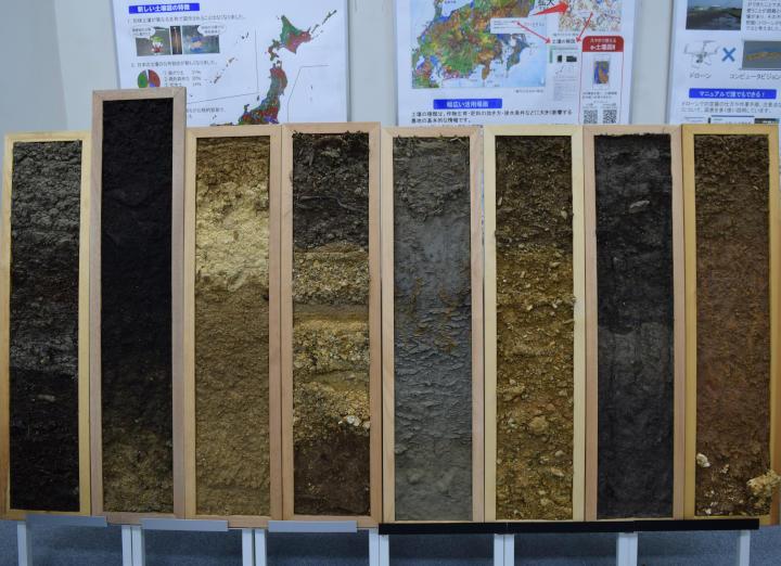 各地の土壌モノリス