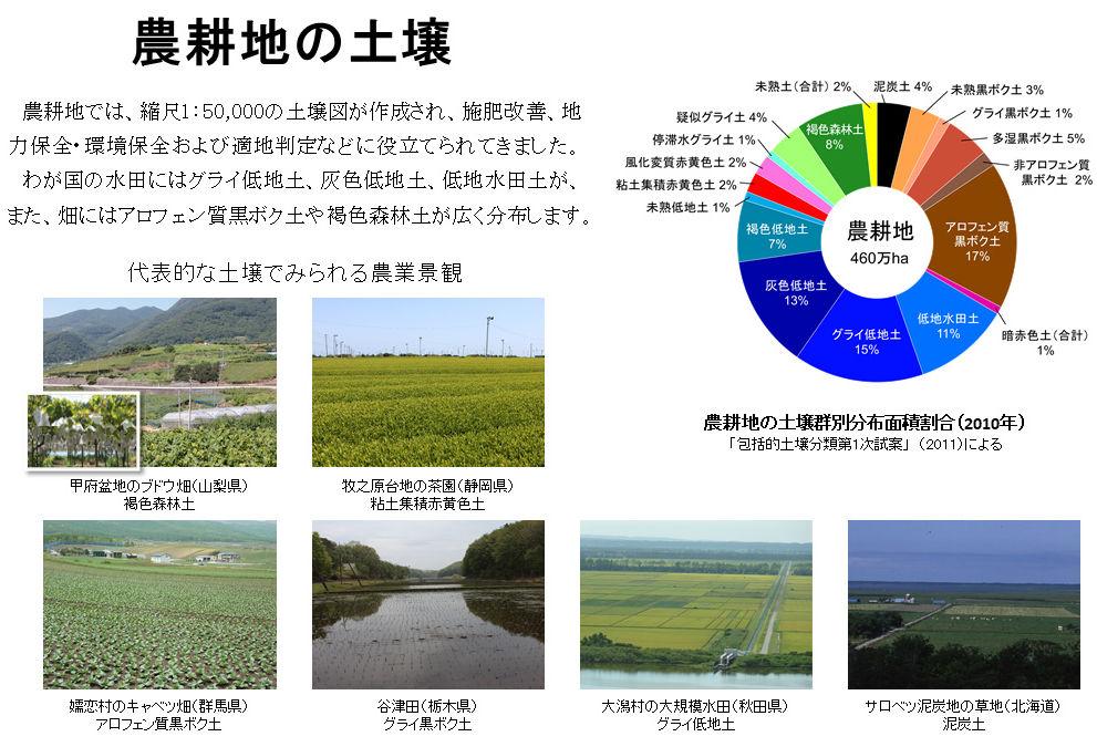 農耕地の土壌