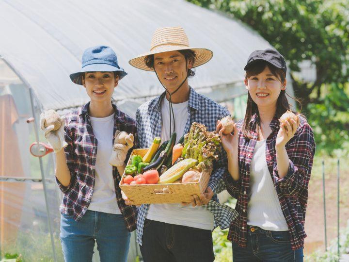 【農業への参入をお考えの方へ】就農・新規事業への展望を教えてください! 先着で10名様に、Amazonギフト券をプレゼント