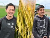 堅実に、実直に、農業を続ける術を。札幌市の近郊で学べる貴重な畑作体験