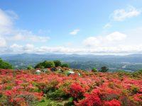農業のこと、暮らしのこと、福島県田村地域の就農支援プロジェクトにお任せあれ! ワンストップ窓口で独立就農をサポートするその仕組みとは