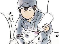 酪農漫画「うしだらけの日々」 第20話 子牛の哺乳