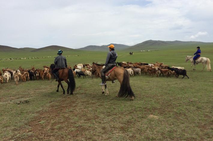 ナリワイ遊撃農家とはモンゴルツアー