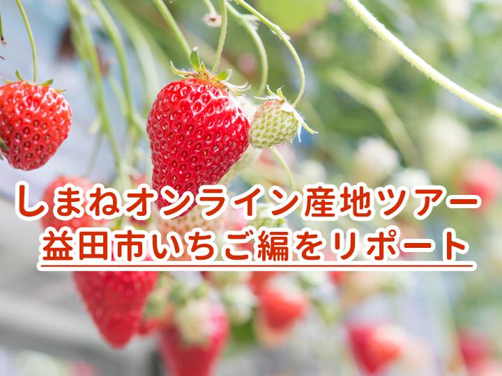【リポート】先輩農家の生の声をリモートで配信! 『しまねオンライン産地ツアー 益田市いちご編』
