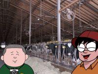 微生物との共生は愛~牛が食べられない草をルーメンで消化する話~