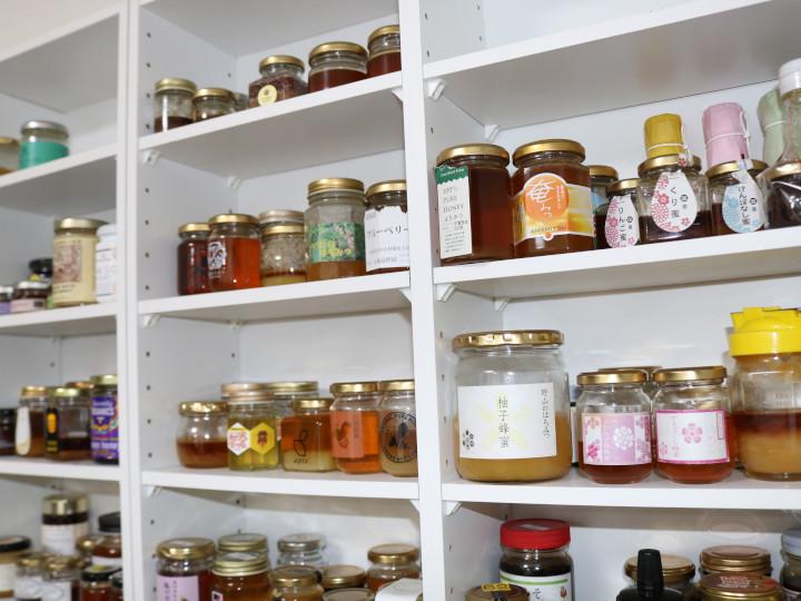 いろいろな蜂蜜