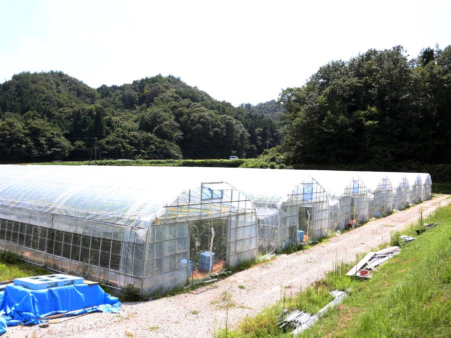 山口県農林水産部