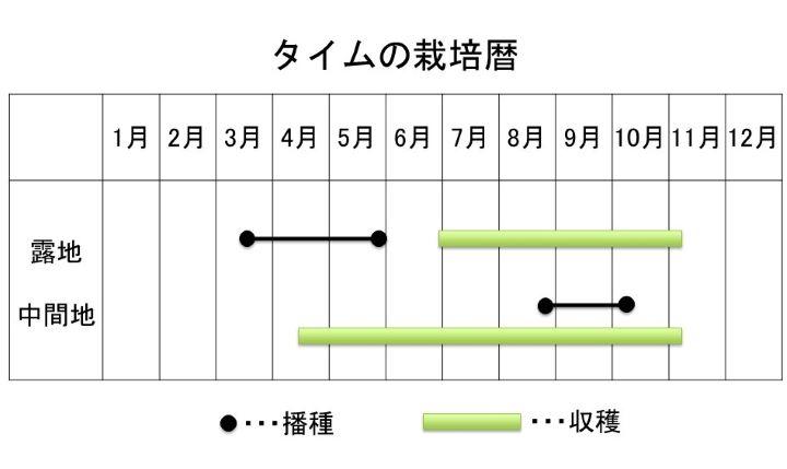 タイムの栽培暦