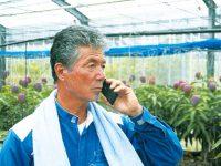 農業IoTを手軽に導入可! 畑の異常を電話で知らせる新サービス「てるちゃん」とは