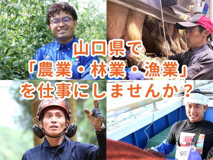 山口県で「農業・林業・漁業」を仕事にしませんか? 【相談者募集中】