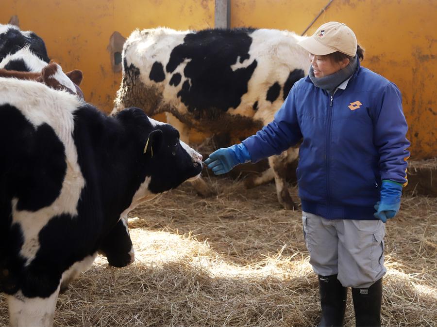 トップとメンバーの距離が近い!未来の乳牛を育てる秘訣を学ぶインターンシップ