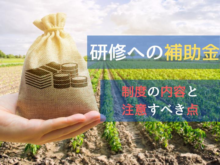 【農の雇用事業】研修の助成金を受け取るには? 押さえるポイントはここ!