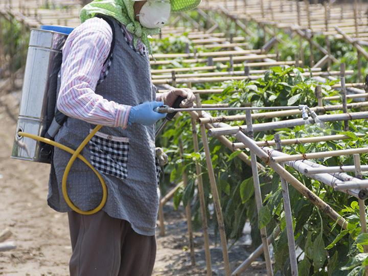 防除機とは? 動噴・噴霧器・トラクター・ドローンなど、害虫駆除や除草に使える農機具を解説