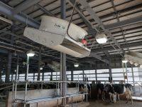 住環境を改善し、乳用牛の暑さ対策を研究! 広島大学の新しい牛舎に注目