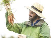 農業で外国人を雇用するには? その方法とメリット、注意点を解説