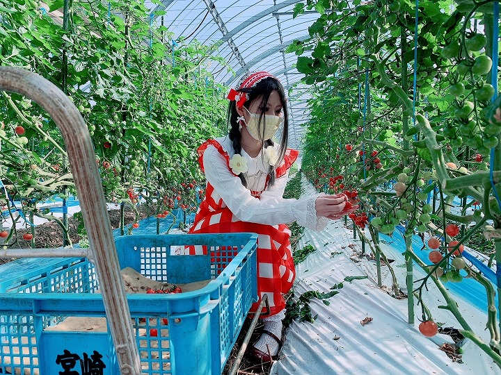 「農作業は甘くない」ってホント? ロリータが4世代経営農家で農業修行してきた