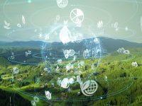 30年後の農業ビジョン「みどりの食料システム戦略」とは?有機農業やスマート技術が肝に