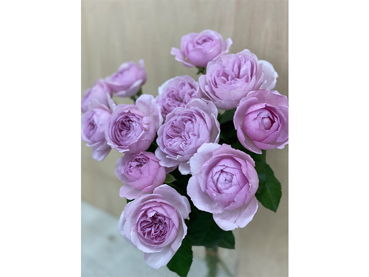 カレン・バラの花束
