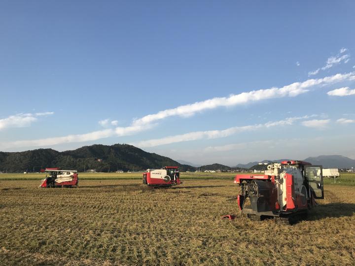 広大な農場