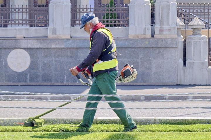 刈払機で芝を刈る様子