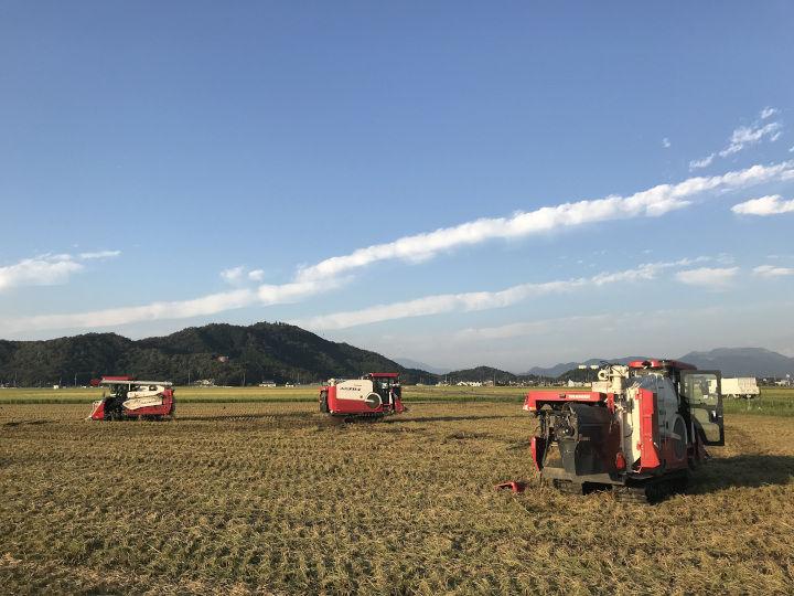 フクハラファームの広大な農場