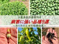 少量多品目農家向きの病害に強い品種5選。売り方の工夫で相乗効果発揮!