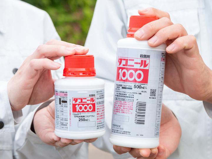 作物の健康も予防が大事。メーカーに聞く、殺菌剤『ダコニール1000』の効果的な使い方