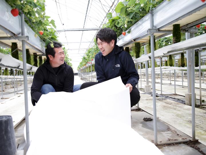 アザミウマ類の対策に小泉製麻の『虫フラッとシート』。農作物の安全性や収量アップに貢献!
