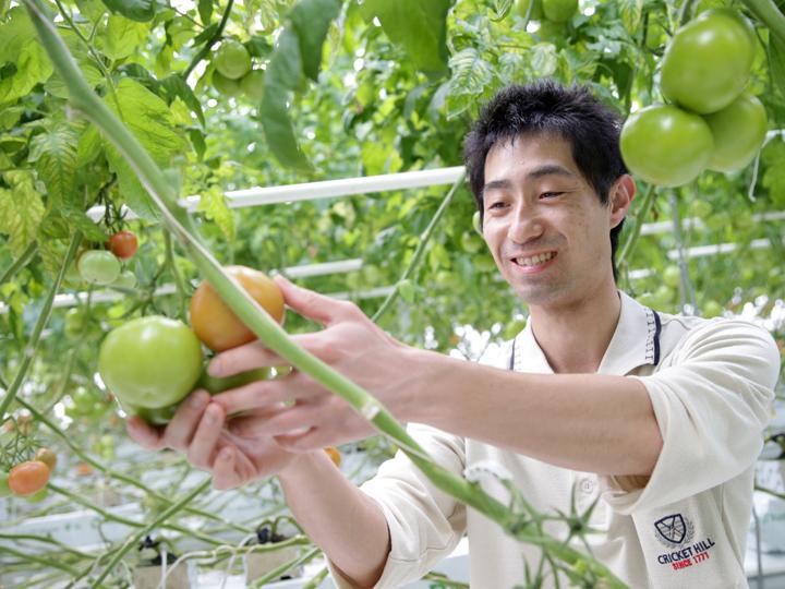 一般社団法人 日本施設園芸協会