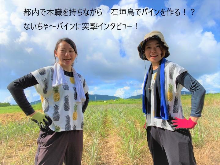 女子2人が石垣島でパイン農場を経営! 関東で本職を持ちつつ沖縄で農業を行うワケ