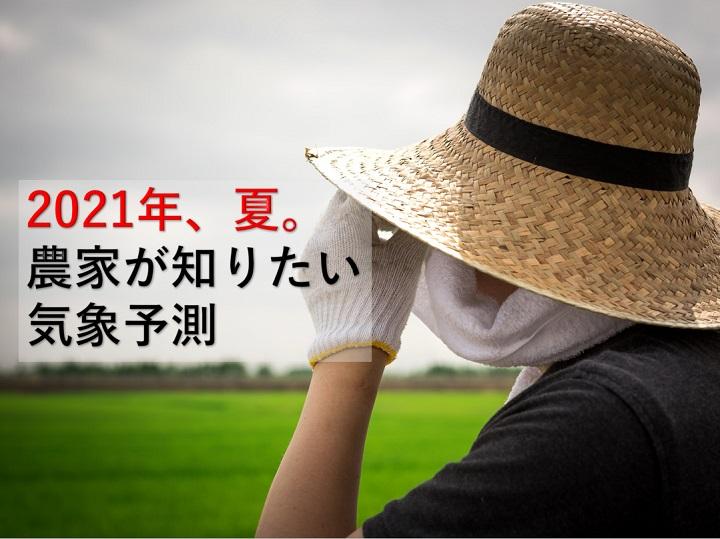 2021年の夏は農家にとってどんな夏? 気になる暑さ、雨、台風など天気について聞いてきた!