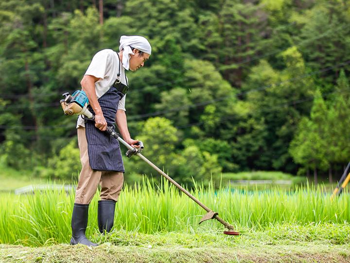 農家が効率的に草刈りをするには? プロ必見、刈払機・草刈機の正しい選び方