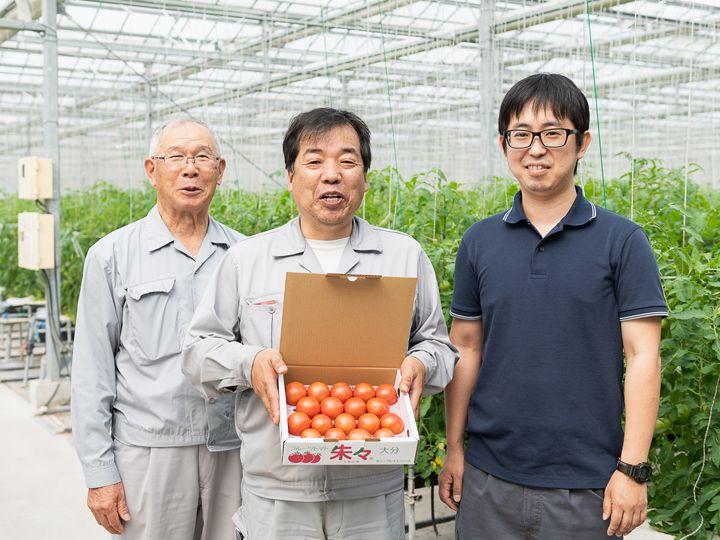 【大分】経営ノウハウを活かした農業参入でブランド化に成功。大手物流企業・上組グループが高糖度トマトで事業展開するメリットとは