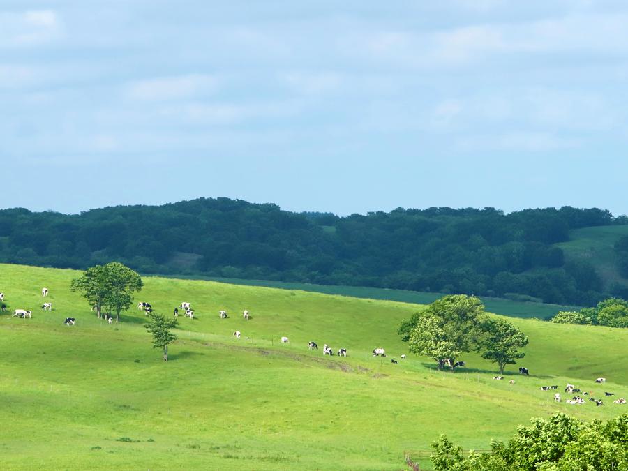 新規就農から社員雇用までサポート!標茶町で見つける、自分らしい就農スタイル