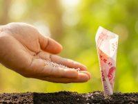 化学肥料の値上がり当面続くか、国際的な需要高で 農家がとれる対策は?