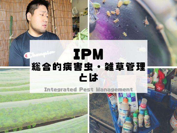 IPM(総合的病害虫・雑草管理)って何? 持続的な農業のためのメリットとは