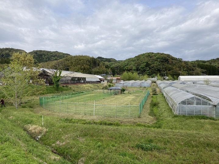 隣接するハーブ生産農場とドッグラン