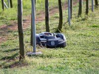 ロボットだから雨天・24時間稼働OK! 果樹の下草管理は『オートモア』にお任せ