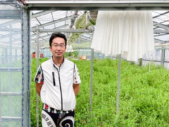 カーネーション農家が驚いた!日射比例式潅水を導入して変化した農作業とは