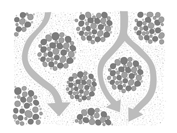 日本の食卓は「微生物」が支える? 収量アップから土壌消毒まで