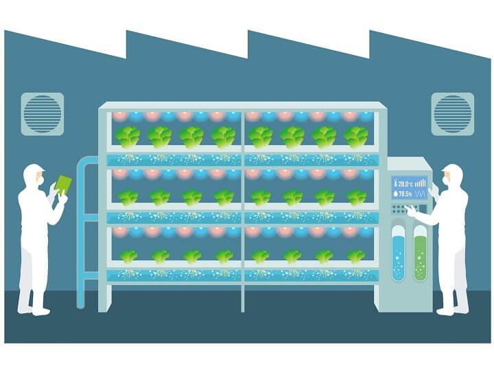 匂いを測るセンサー、農家が自作するIoT 研究者が語る最新のスマート農業