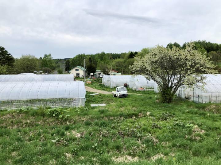 及川農園遠景