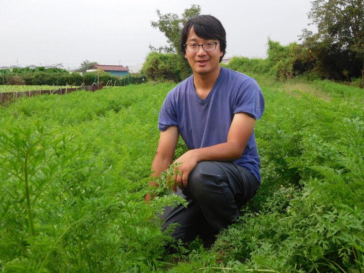 井上祐輔さんが有機栽培で育てた畑(2016年撮影)