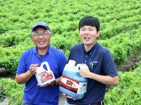 『ザクサ液剤』を使用して10年。丹波の特産物を雑草(イヌホオズキ)から守る