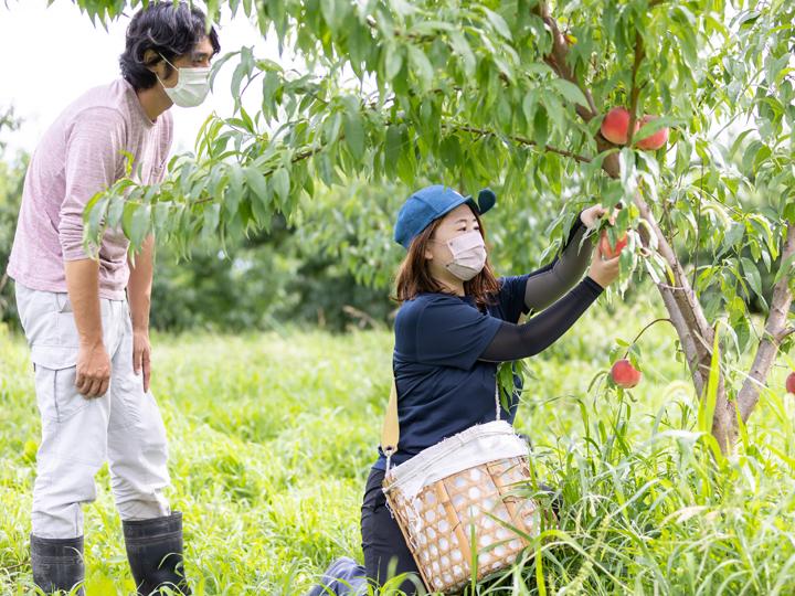 【農業体験レポート】就農の第一歩は農業体験から!福島県伊達市で見つける自分にぴったりな農業のかたち。