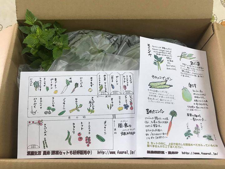 野菜の食べ方や紹介
