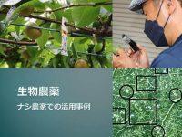 生物農薬って本当に効果ある? 都市農業の現場での実態とは
