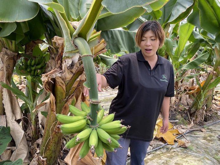 バナナの説明をする高木さん