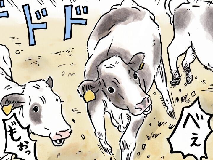 酪農漫画「うしだらけの日々」 第25話 排泄物の掃除に活躍するもの
