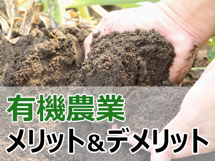 盛り上がりを見せる有機農業のメリットやデメリットを解説